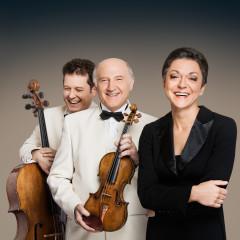 Klavirski trio Brahms, Dunaj