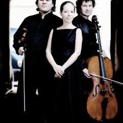 17.7. - Trio Brahms