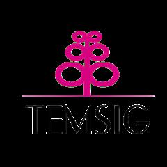 temsig_logo